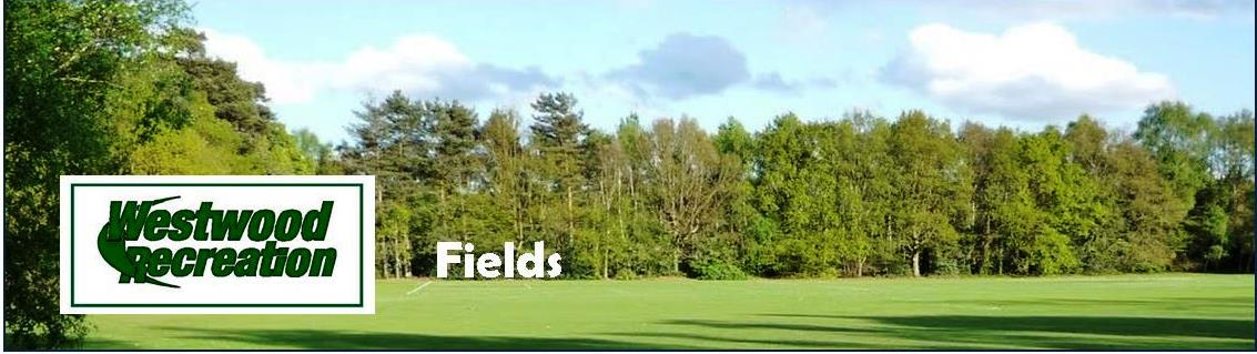 Fields and Facilities Banner